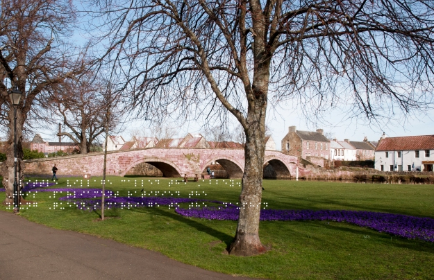 Nungate bridge over the river Tyne. Purple flowers in the foreground. Quote taken from historical figure shown in Braille